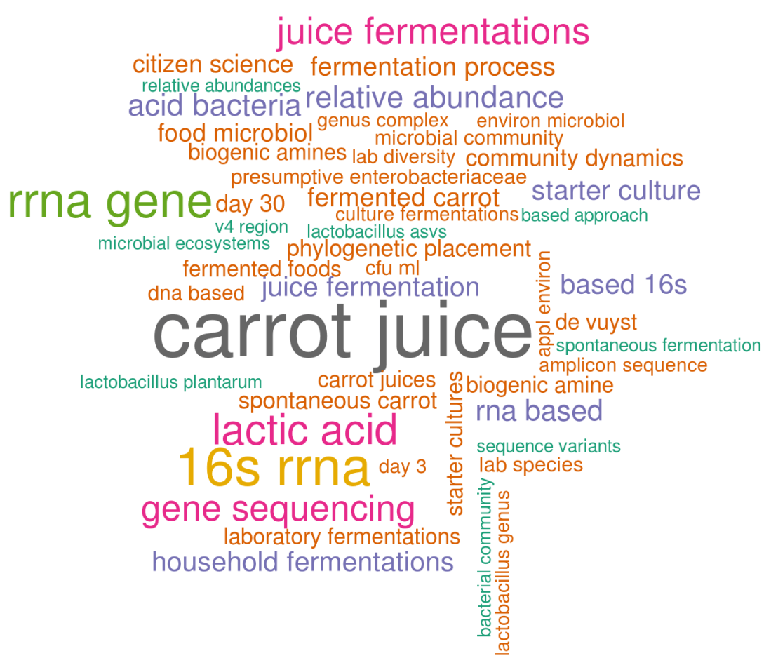 wordcloud_fermentation.png